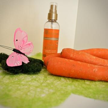huile de carotte 3